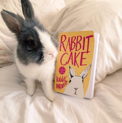 Rabbit Cake + Thumper