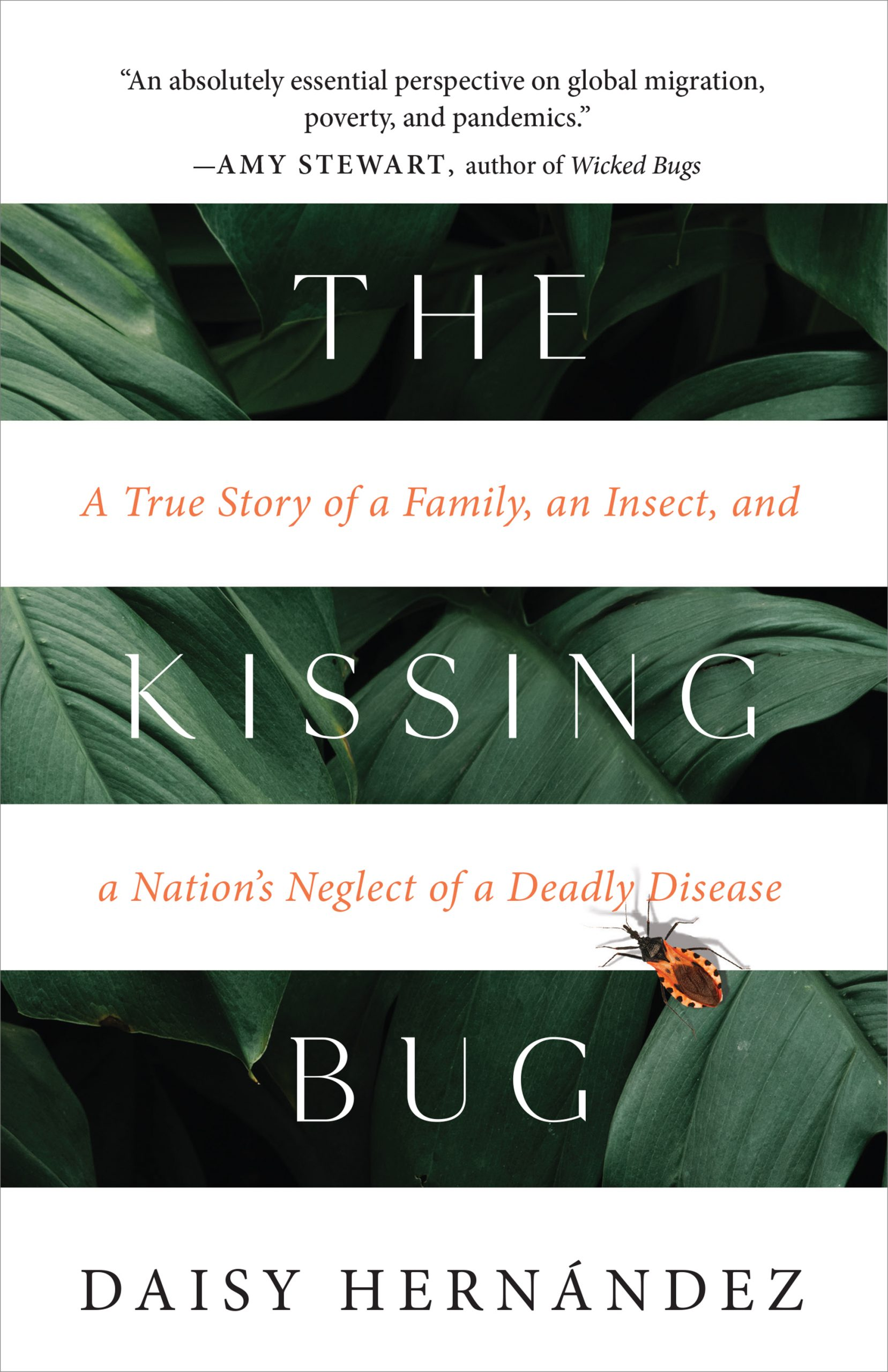 Book cover for The Kissing Bug.