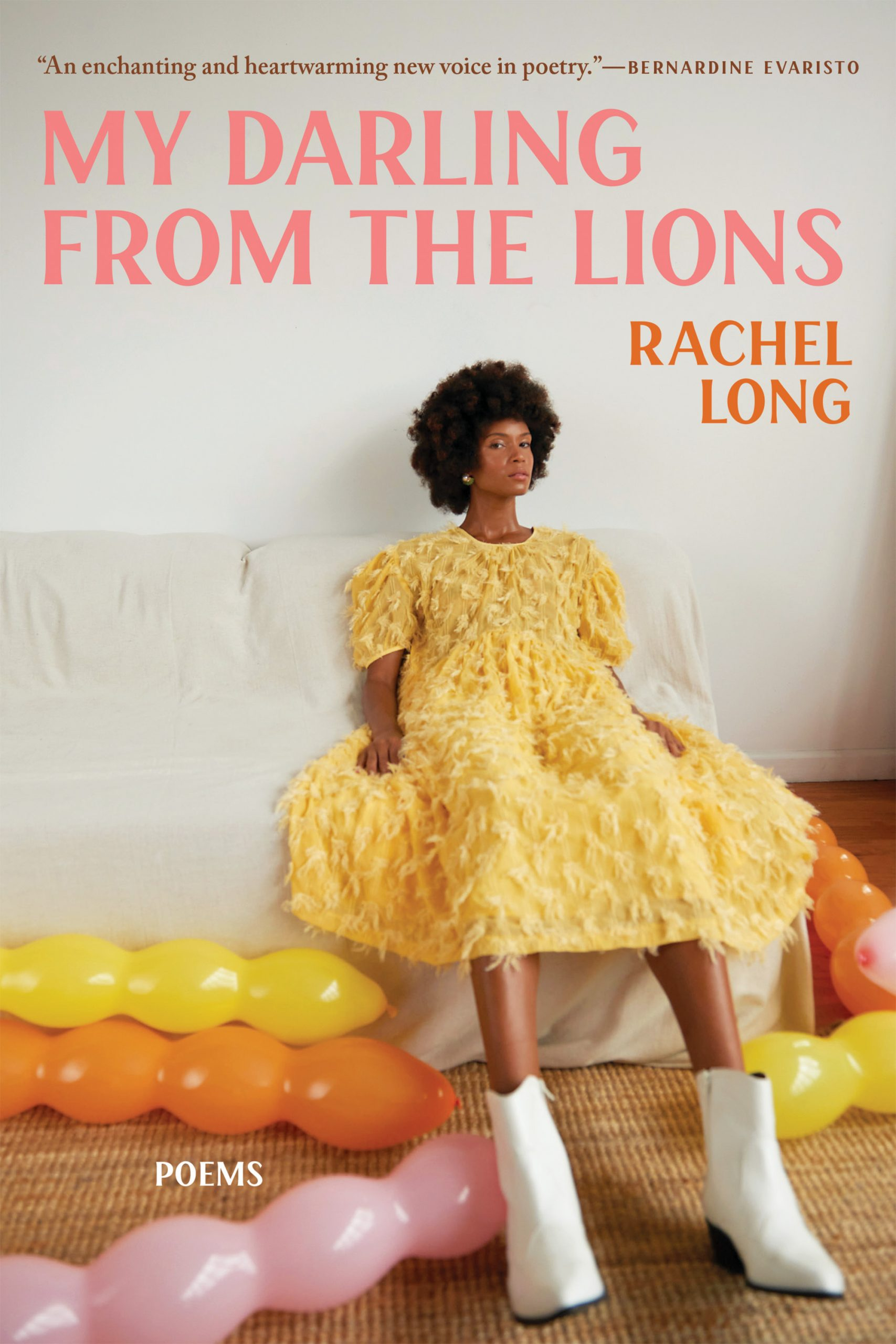 Book cover for My Darling from the Lions.