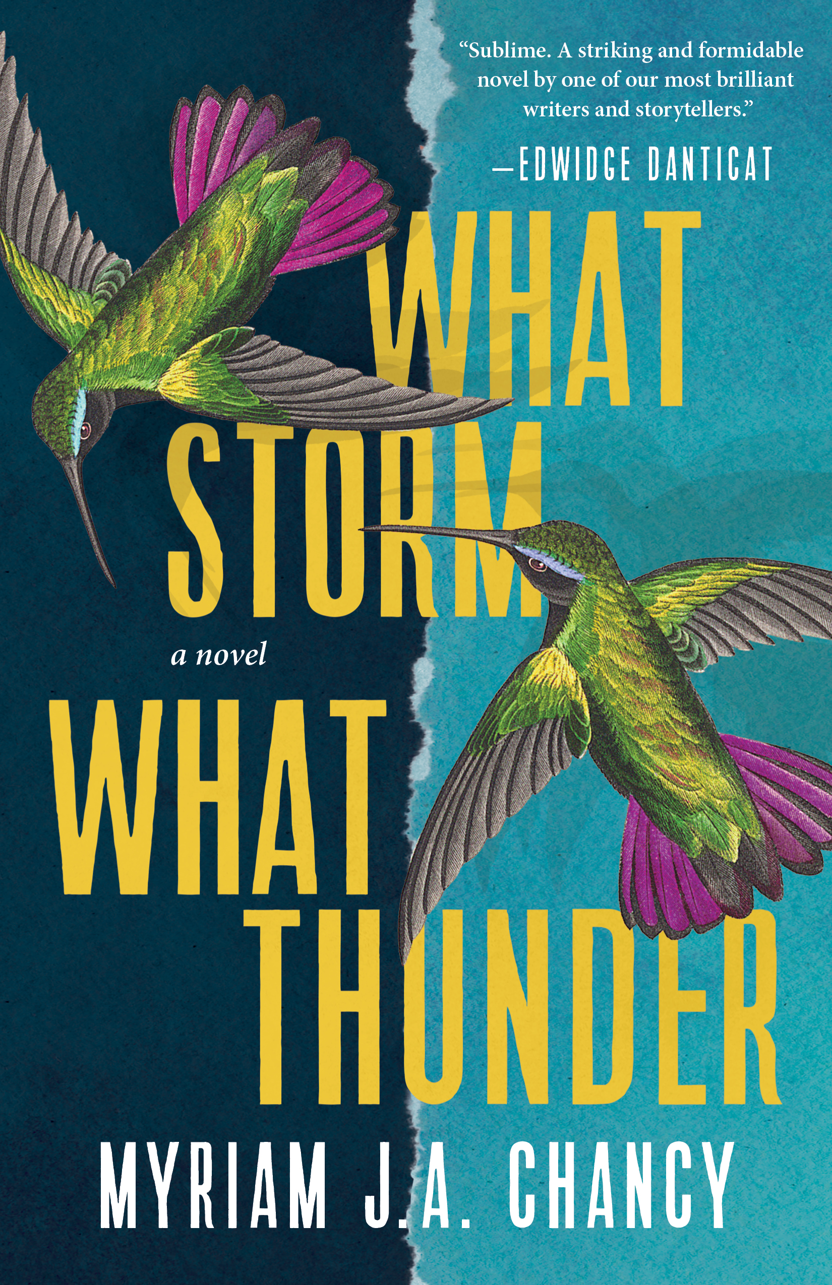 Book cover for What Storm, What Thunder.